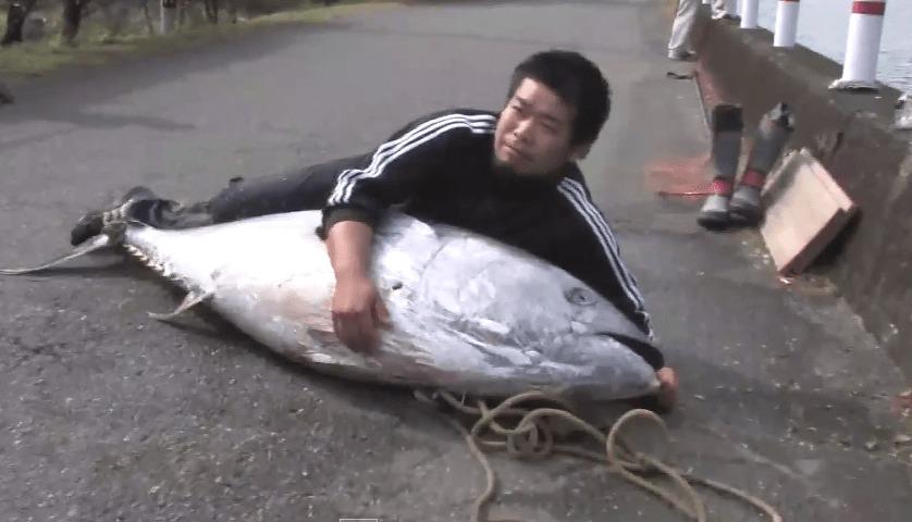 熊本の川でマグロを発見!第一発見者の男性がおいしくいただきましたwwwww
