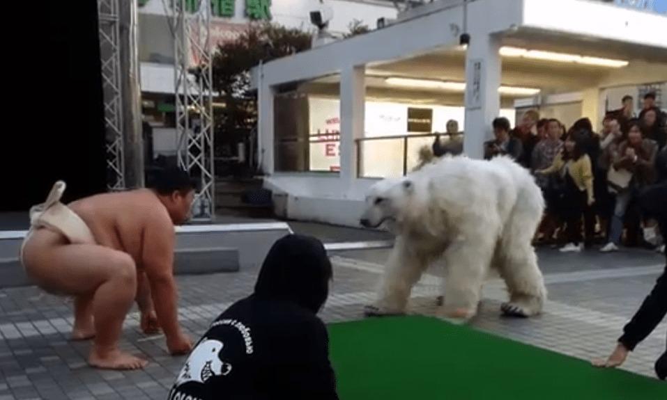 【正体が判明!】渋谷を騒がせたシロクマが予告通り新宿アルタ前に出現!現場の様子を押さえたタレコミ映像!!