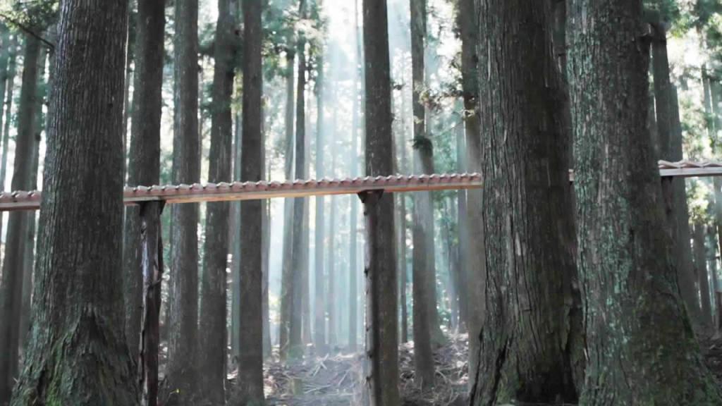 森の中に作られた44メートルの巨大な「木琴」の上を転がる「球」が奏でる音楽が美しすぎる!