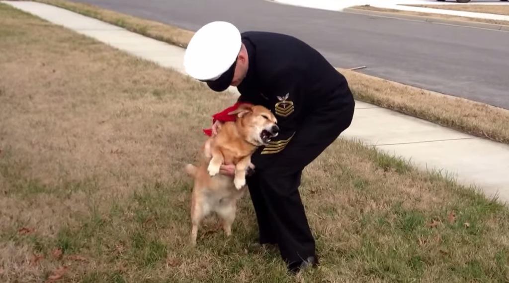 飼い主の帰りを待ち続け、ガンの余命宣告を超えて生きた犬。切望の再会に歓喜する二人の姿に涙が止まらない。。