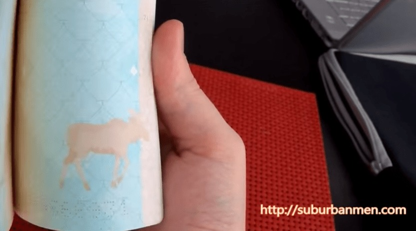 フィンランドのパスポートは、パラパラ漫画になっている!!