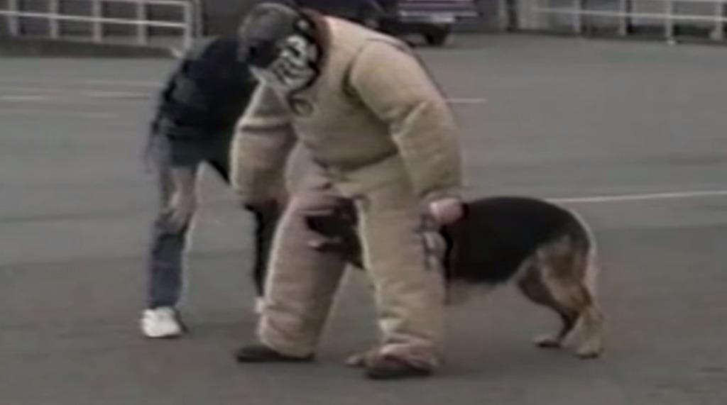 警察犬としてのやる気がまったく感じられない犬wwwwwwwwww