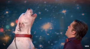 すごい歌唱力でホイットニー・ヒューストンの名曲「I Will Always Love You」を歌い上げる犬に会場大盛り上がり!!