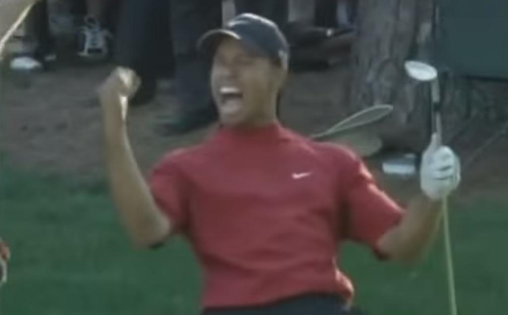 【神技】ゴルフ選手権でタイガー・ウッズが決めた伝説のショットが凄い!ボールが急角度で方向転換する!!