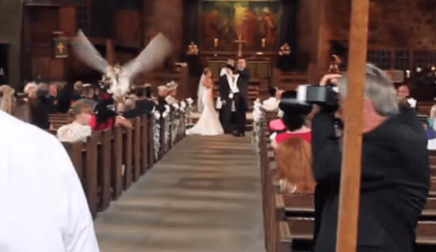 バージンロードを飛んで指輪を届けに飛ぶフクロウ。めちゃステキな結婚指輪交換!!
