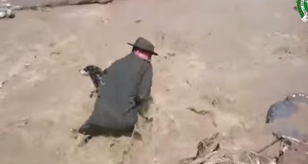 【感動】犬を救うため、濁流に飛び込んだ勇敢な警官たちに賞賛の嵐!!