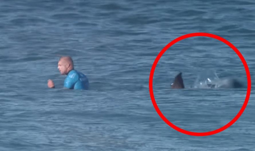 サーフィン大会の生放送中プロサーファーがサメに襲われるも、奇跡的に生還!緊迫の一部始終!!