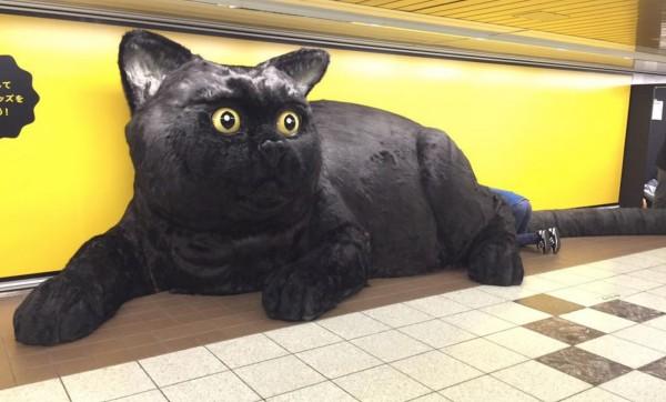 新宿駅に巨大なクロネコが出現し話題に!鼻を押すと「ニャー!」と鳴いてプレゼントを口から吐き出してくれる!!