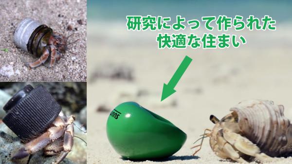 貝殻不足のヤドカリに最高の「家」を届けるプロジェクトが素敵すぎる!!