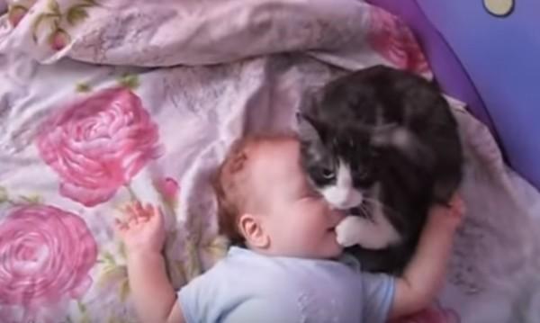 泣きそうな赤ちゃんに対する猫の行動が優しい><
