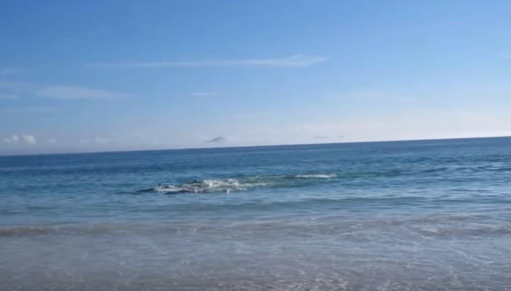 海を撮影していたら、次の瞬間目を疑う光景に!!