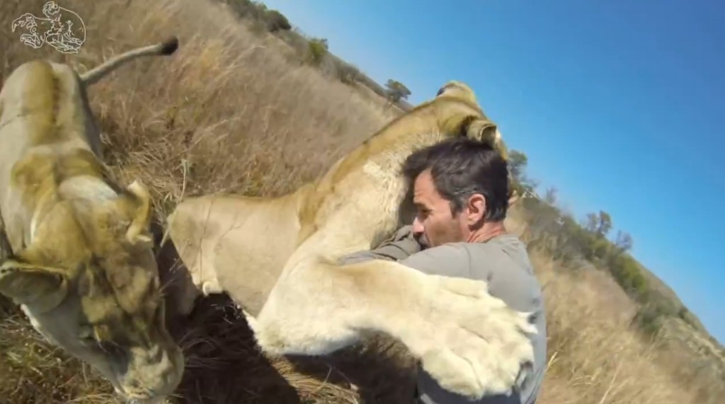 「ライオンと仲間になった男」のライオンとの濃厚ハグシーンをまとめた映像が強烈!!