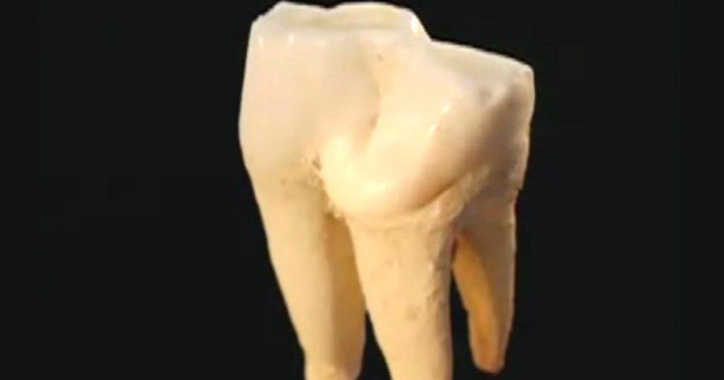 【神秘】超高性能電子顕微鏡で「歯」を2000万倍ズームしていく動画がヤバい!原子構造まで丸見え!