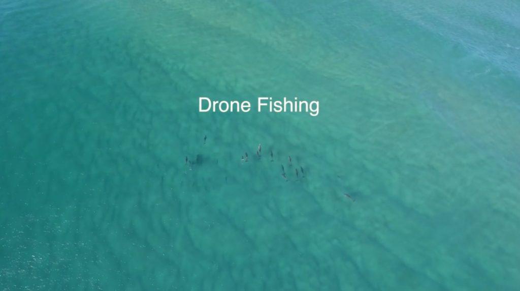 漁業の未来系?!ドローンを利用してマグロを釣る画期的方法!!
