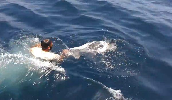 海上でポリ袋に閉じ込められた亀を発見!漁師は迷わず海に飛び込んだ。
