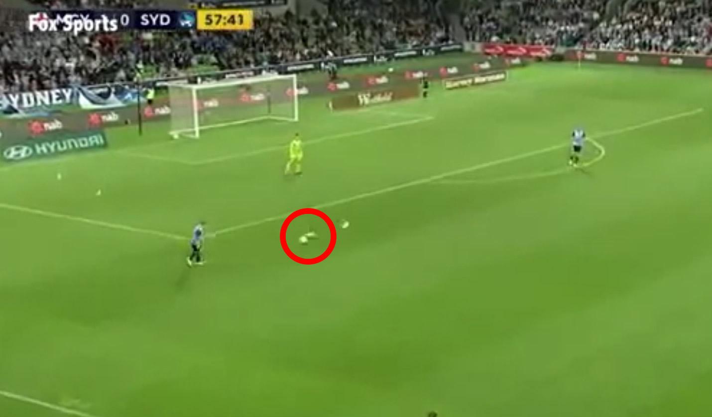 サッカーの試合中ボールに当たってしまったカモメ。次の瞬間、試合中にもかかわらずキーパーが思いがけない行動に!!