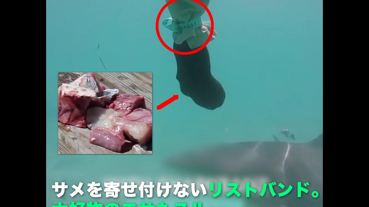 サメを寄せ付けないリストバンド。近くにエサを撒いても近寄らないほど!!