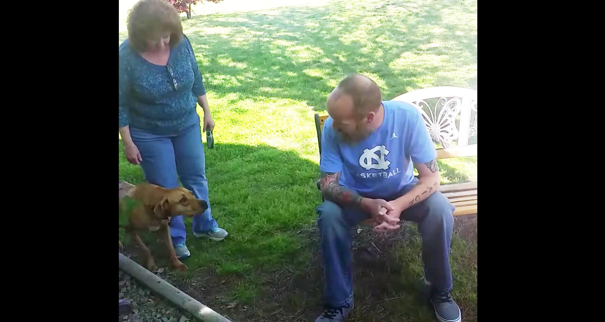 病気で痩せ別人になってしまった飼い主に2ヶ月ぶりに会った犬。威嚇していたものの匂いを嗅いだ瞬間!!