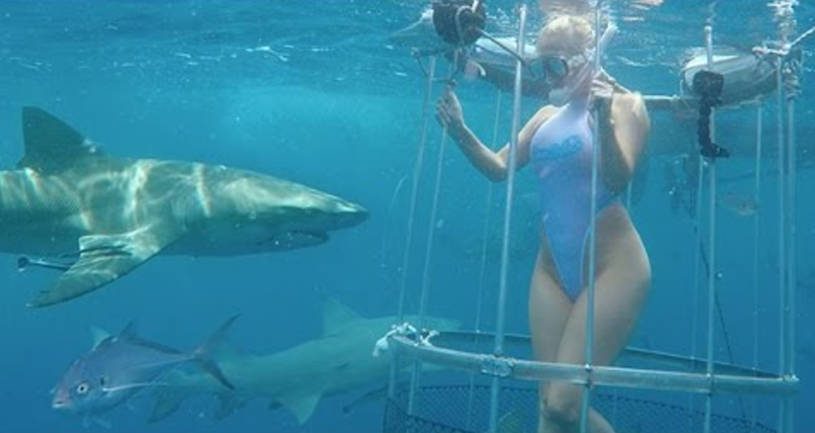 撮影中の女優がサメに噛まれ負傷!?ズサンすぎる撮影現場