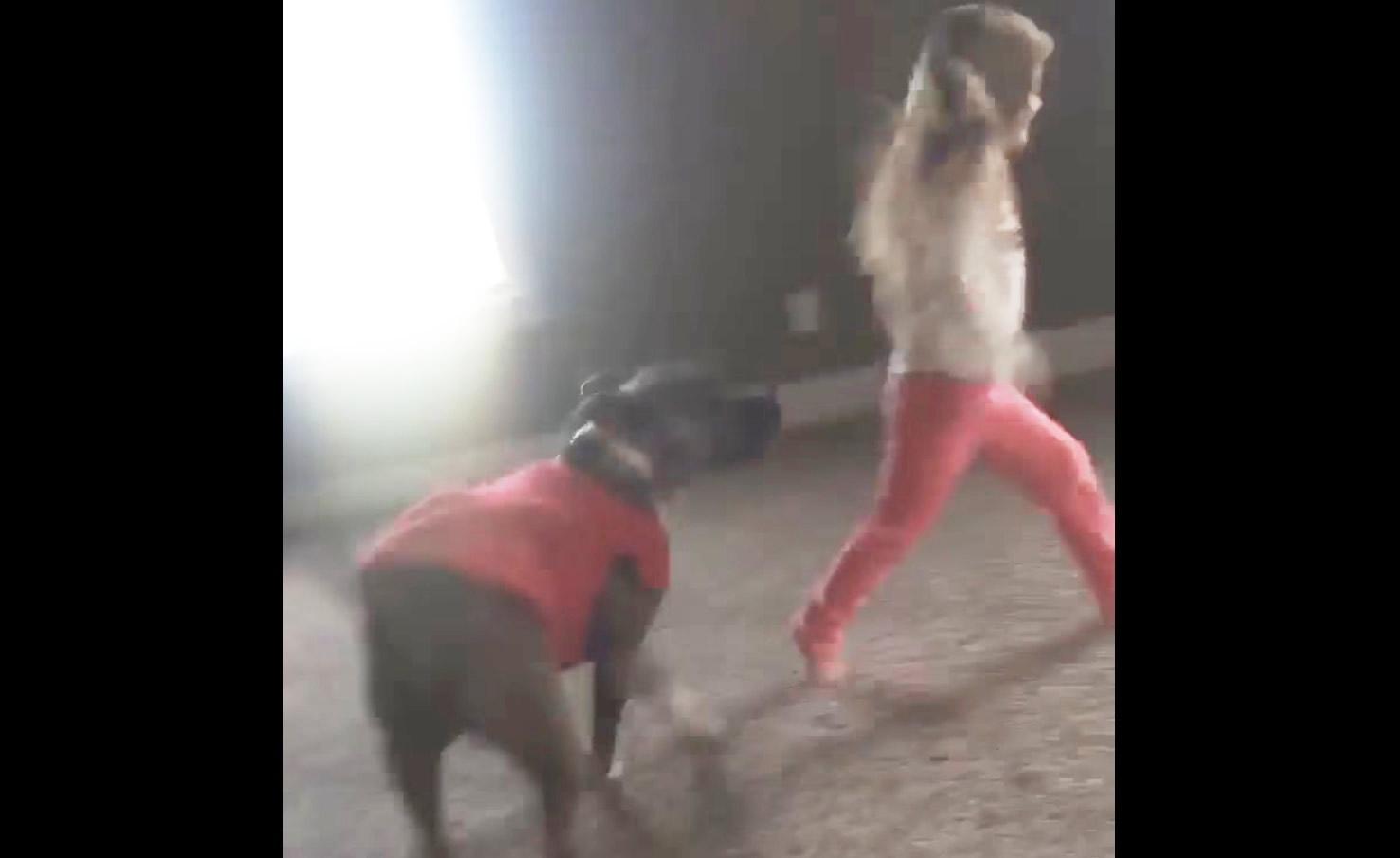 少女の側転を見た犬の予想外の行動に大爆笑!