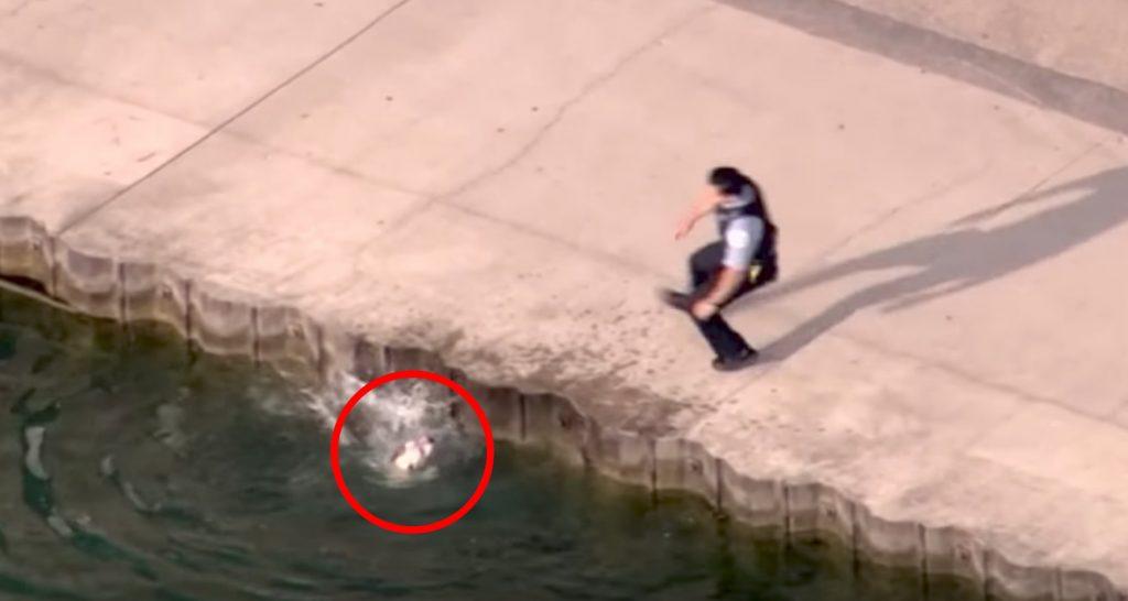 岸壁から落ちて溺れそうな犬。警察官の迅速な行動が素晴らしい。