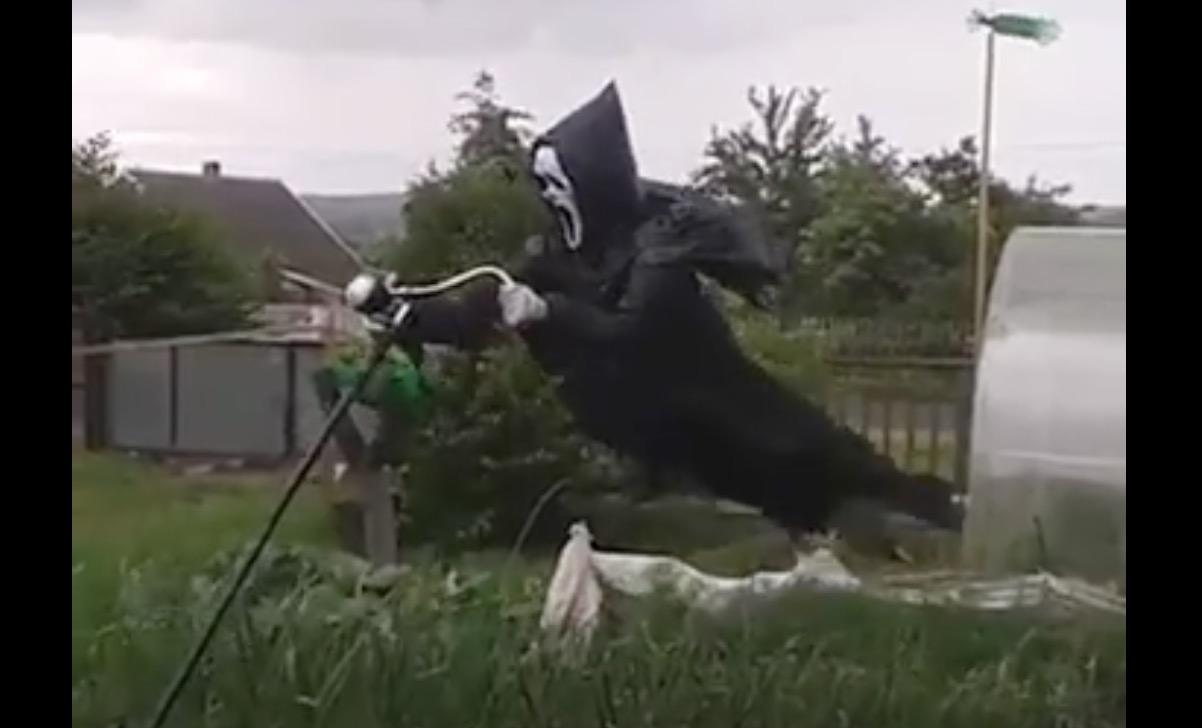 本当に恐ろしいカカシが撮影される!動きがリアル。。