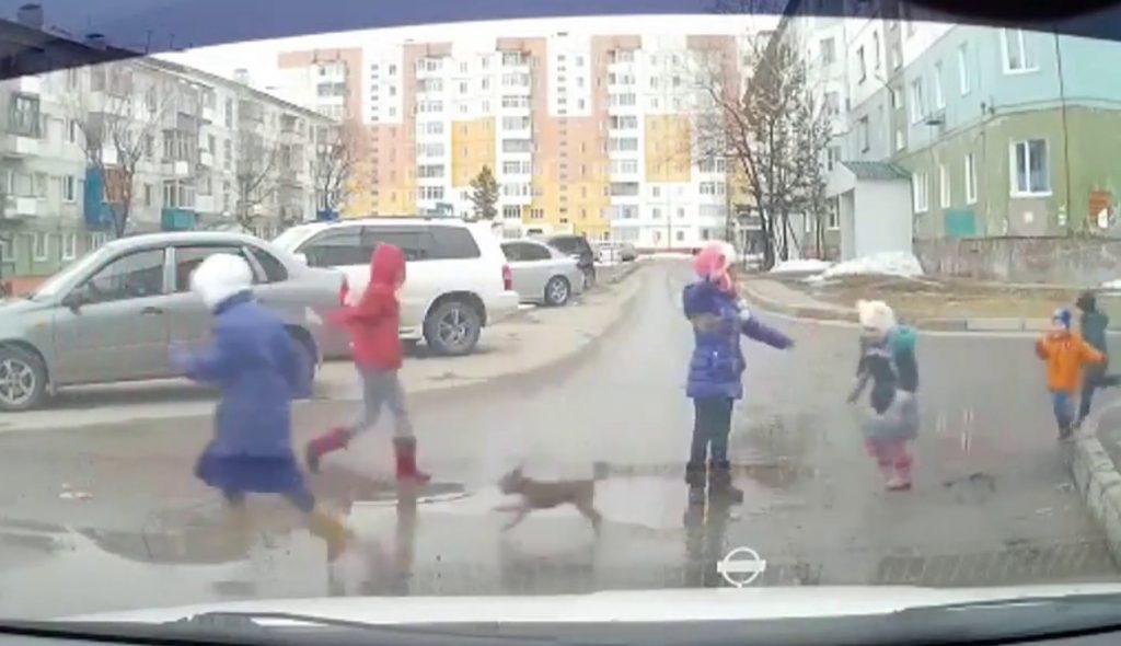 小さな子たちが道を渡れるように、年上の子が取った行動が素晴らしい!