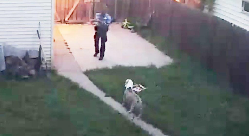 警報を受け駆けつけた警官が、飼い犬に驚き発砲。監視カメラの映像が物議