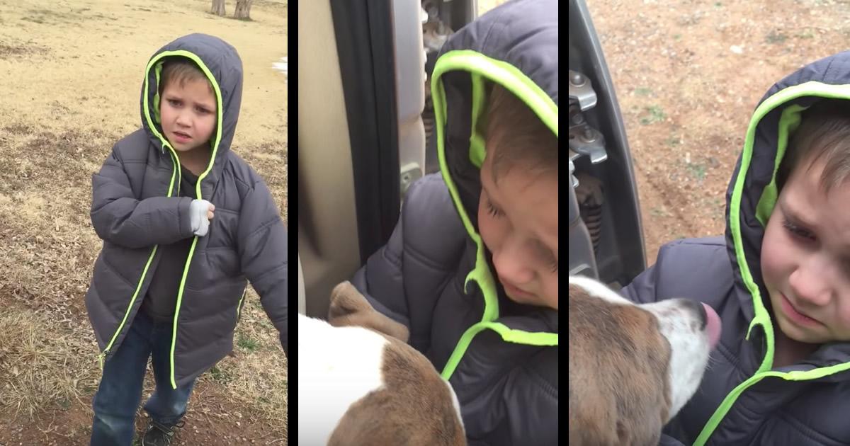 行方不明だった飼い犬と再会した瞬間の、男の子と犬のリアクションにもらい泣き、、