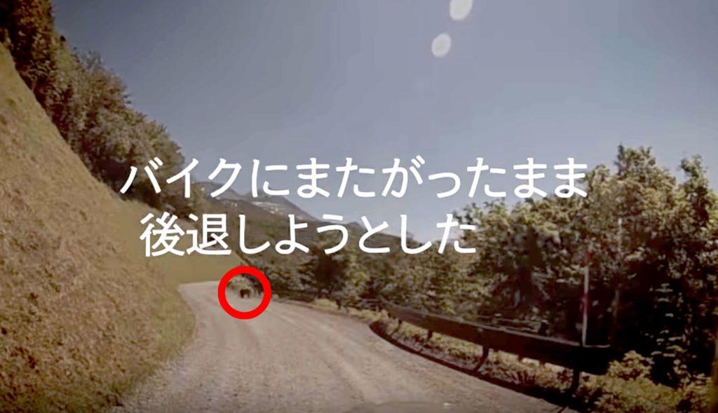 【日本】バイクの運転中「ヒグマ」に遭遇!その時「考えたこと」が生々しく伝わる動画