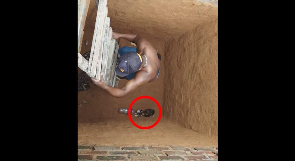 穴の底の猫を助けようとした男性。しかし猫に助けなど必要なかった