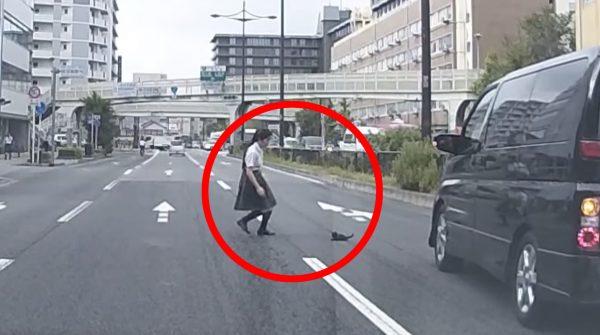 【京都】大通りに子猫が!大人たちが傍観する中、女子高生が子猫を救出!