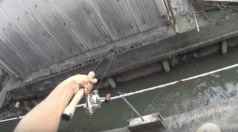 家の中から前を流れるドブ川にルアーを投げたら、大物が釣れた!