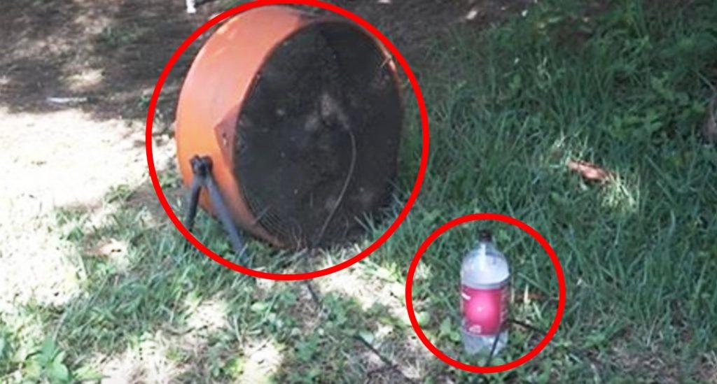 数千匹の蚊を一気に退治できる方法が発見され話題に!!