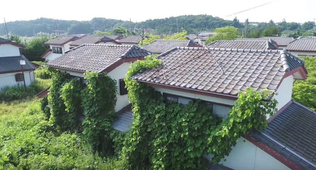 人がいなくなり緑に埋もれた福島の町。ドローンで捉えた帰還困難区域の今
