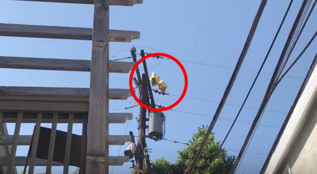 電線に絡まったガス風船が大爆発!こんな状況を見たらすぐ通報すべき