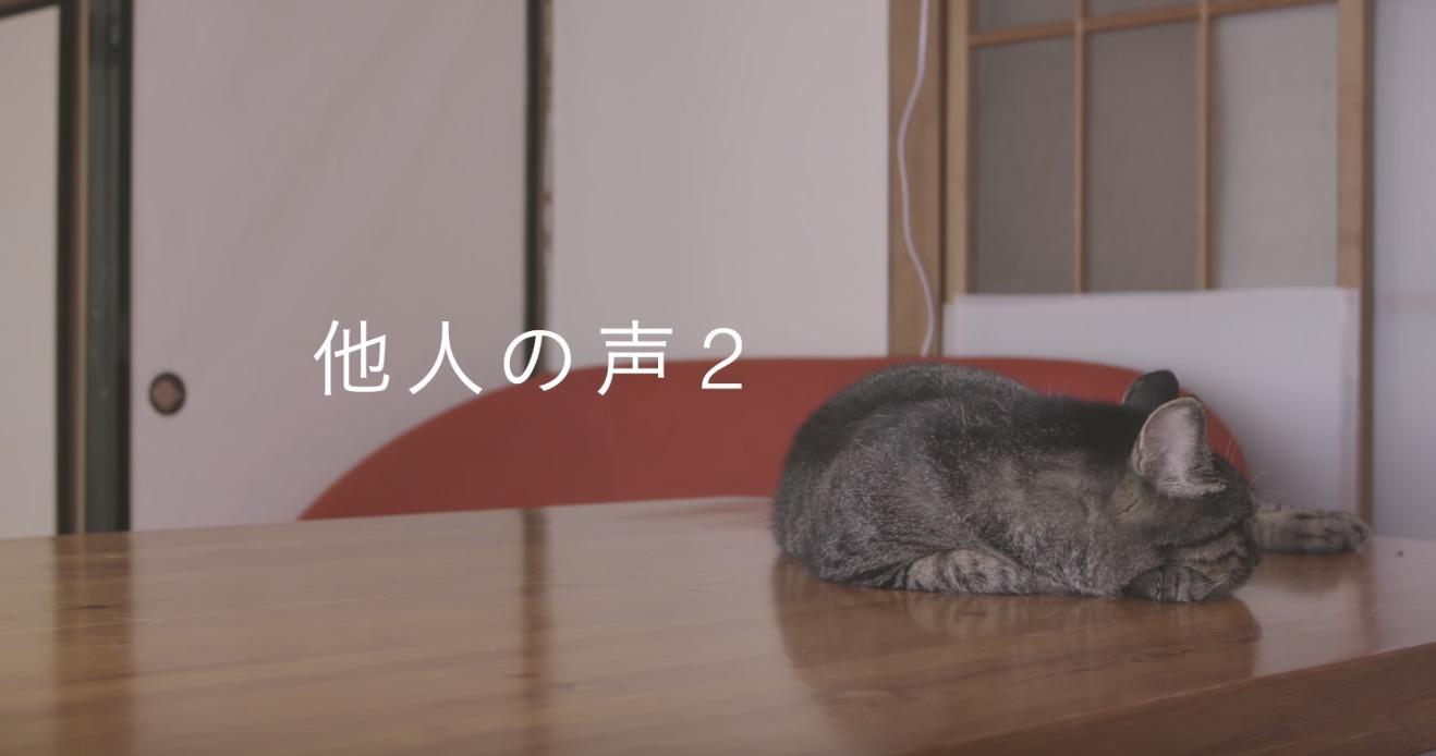 2年ぶりに飼い主さんの「声」を聞いた猫の反応に感動!