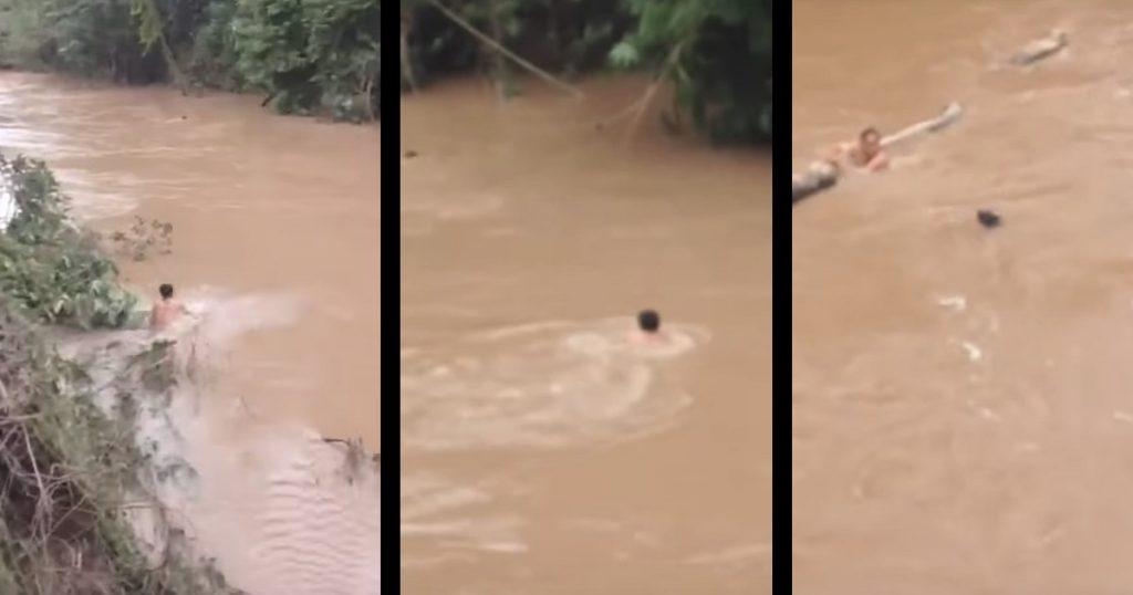 増水した川に流された犬を発見した52歳の男性は、すぐに川に飛び込んだ