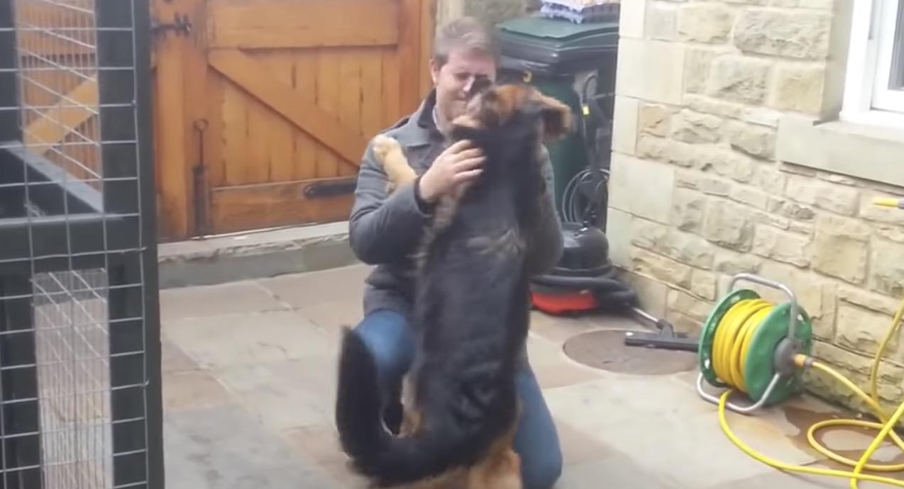 数ヶ月ぶりのサプライズ再会で、最高の喜びっぷりを見せてくれる犬!