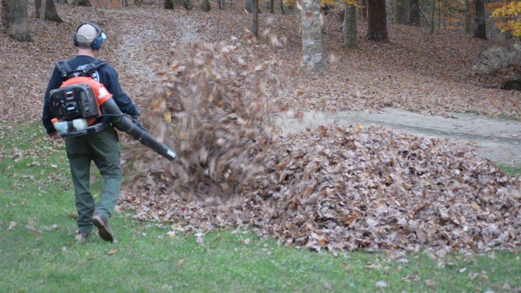 ブロワーで落ち葉掃除をしていたパパ。中から出て来たものにズッコケるほどびっくり笑