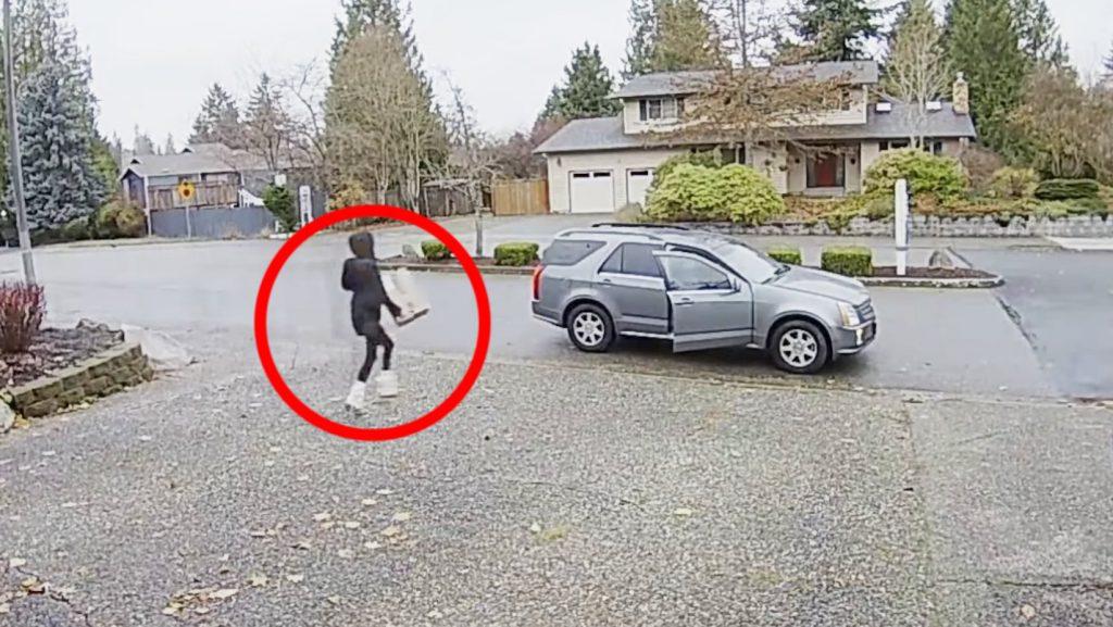 車で来た泥棒女、しかし車だけ逃走!更にそこにいた飼い犬の行動に注目が集まる