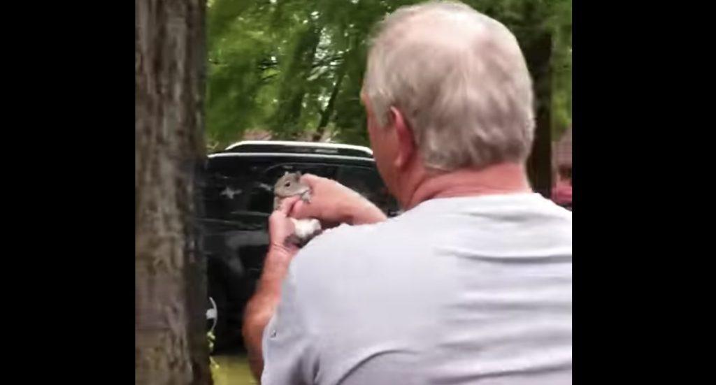 息子が保護したリスを自然に戻そうとした父。不在の息子のために動画を撮影していたらとても見せられない映像に。。