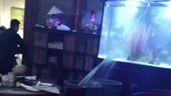 レストランの水槽が割れて水浸しに!溢れ出る水に手の打ちようがない。。