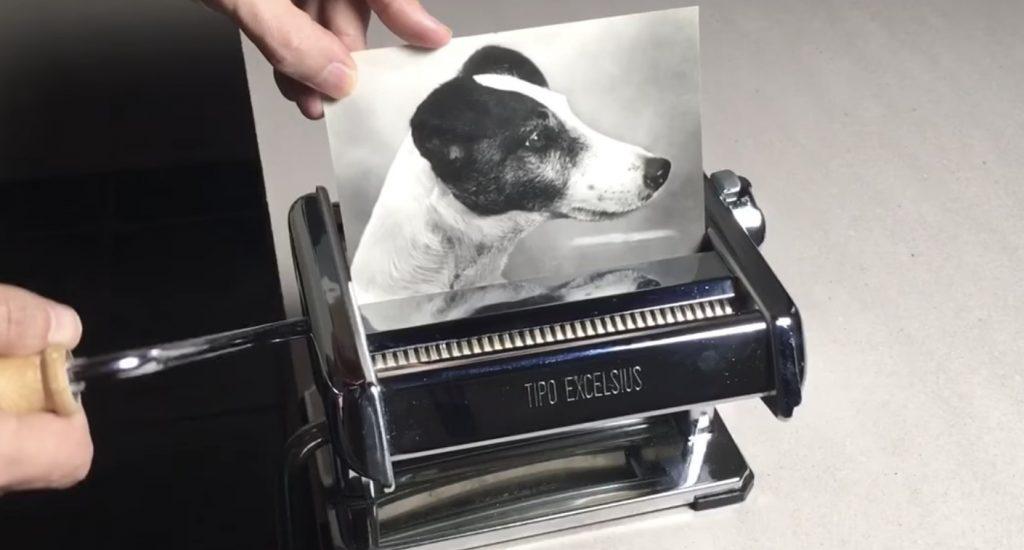 日本人による「1匹の犬の写真をカットし、4匹にする方法」が魔法のようだと海外で話題に!