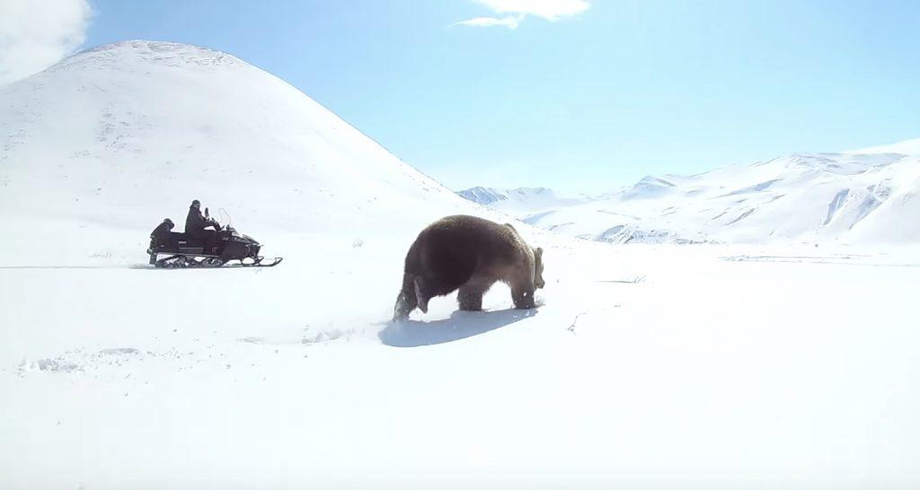 スノーモービルで熊を威嚇していたら、恐ろしい逆襲にあう!