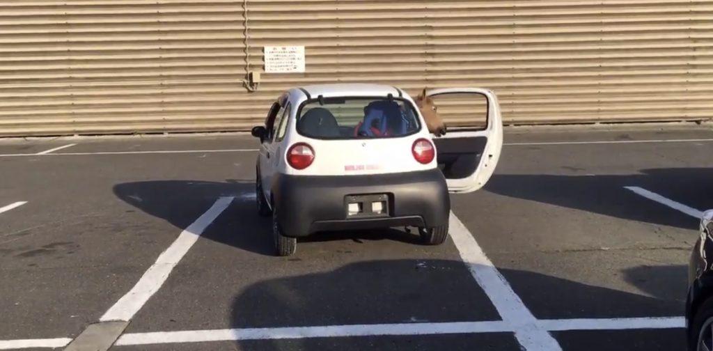 本庄サーキット公式が紹介した「駐車の方法」動画が「CGかと思った」「普通の人には無理」など話題に!