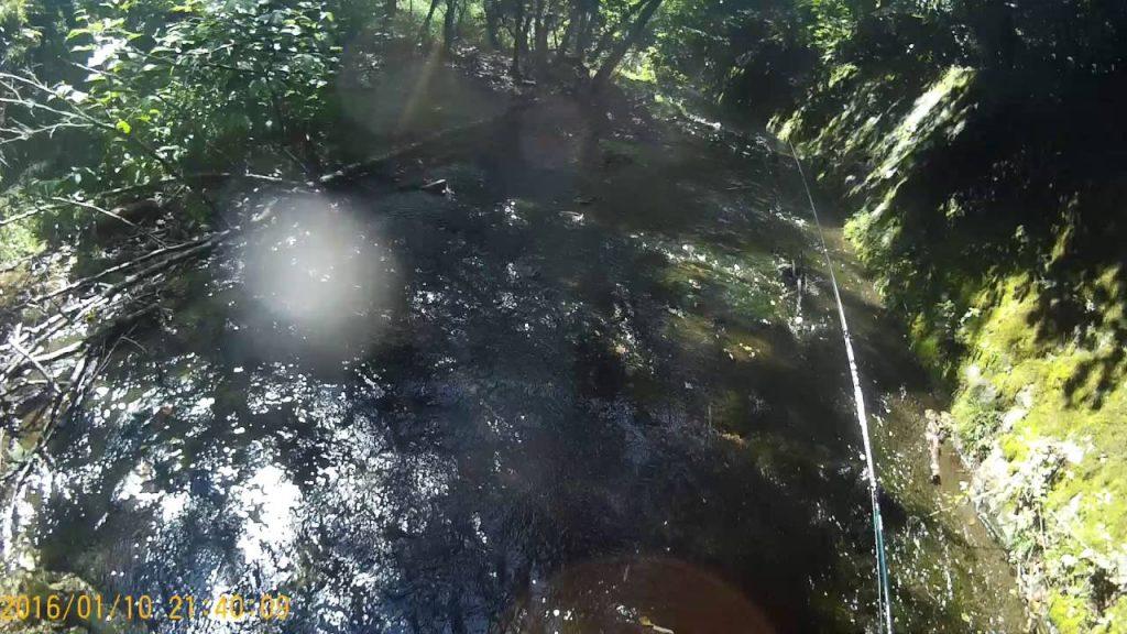 【山梨】渓流釣り中、気付いたら目の前に襲いくる「熊」が!釣り人が撃退した方法が凄い!