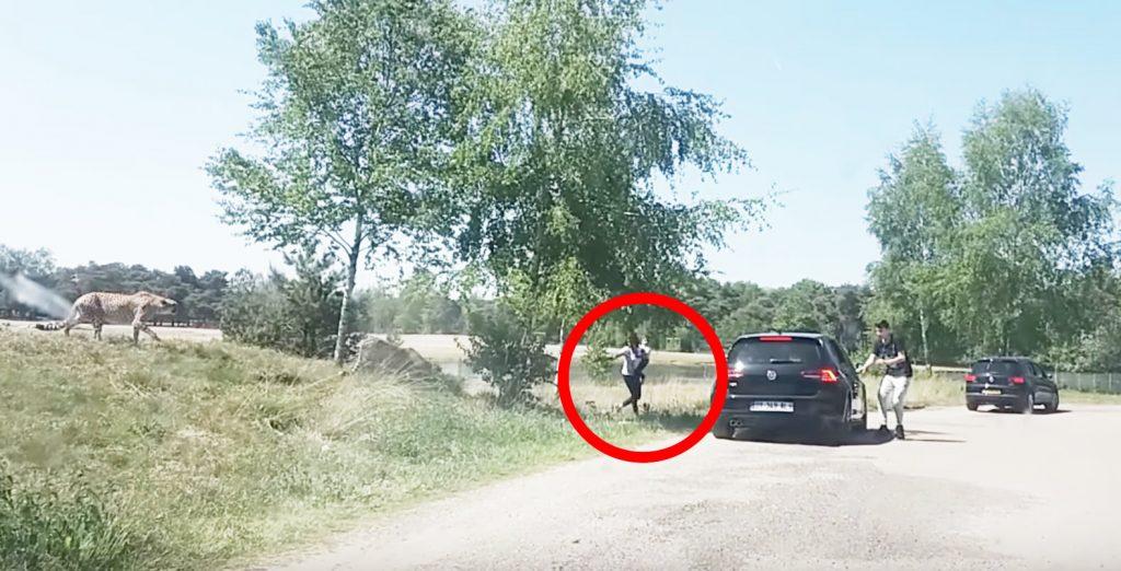 サファリパークで、赤ちゃんを抱きながら車外に出てチーターに狙われた家族に批判殺到!