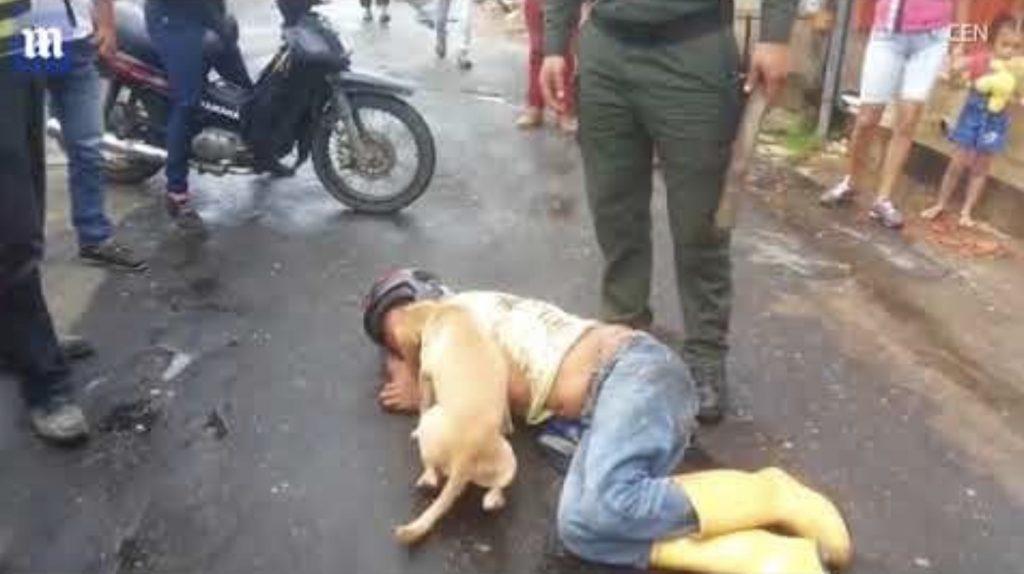 酔っぱらって路上で寝てしまった飼い主を必死に守る犬がエラい!「愛だね!」