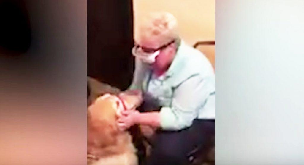 【号泣】盲目の女性が、6年間付き添ってくれた盲導犬を機械を通し初めて見た瞬間、涙が止まらなくなる